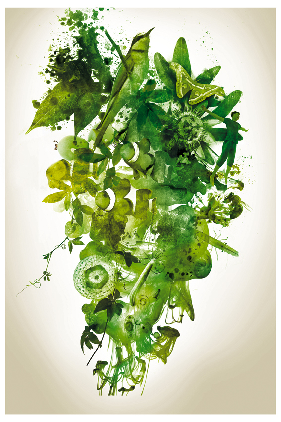 affiche biodiv DEF